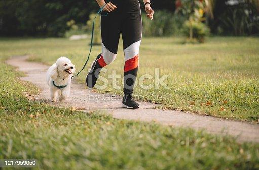 female teenager walking the dog