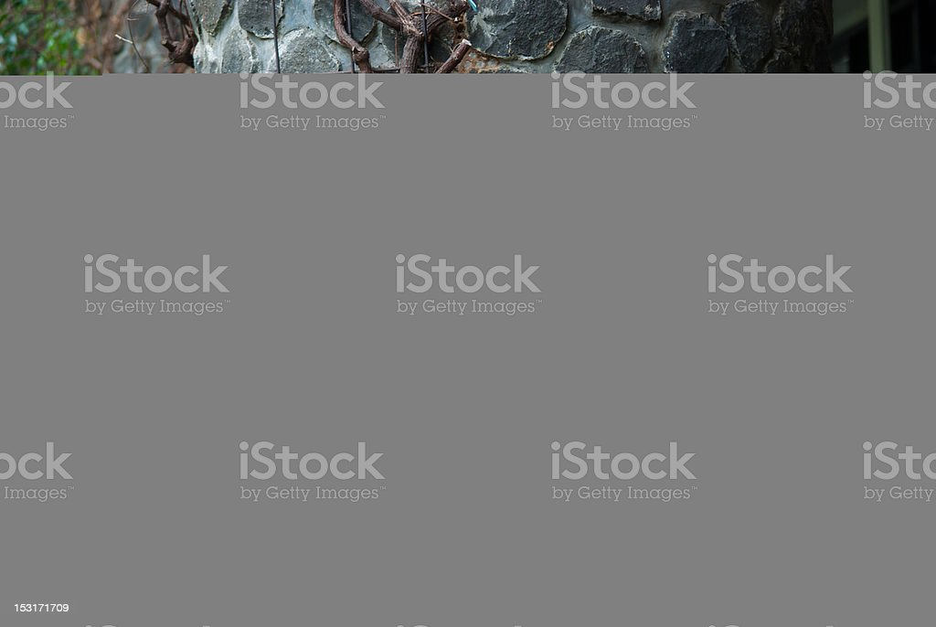 asian female college student royalty-free stock photo