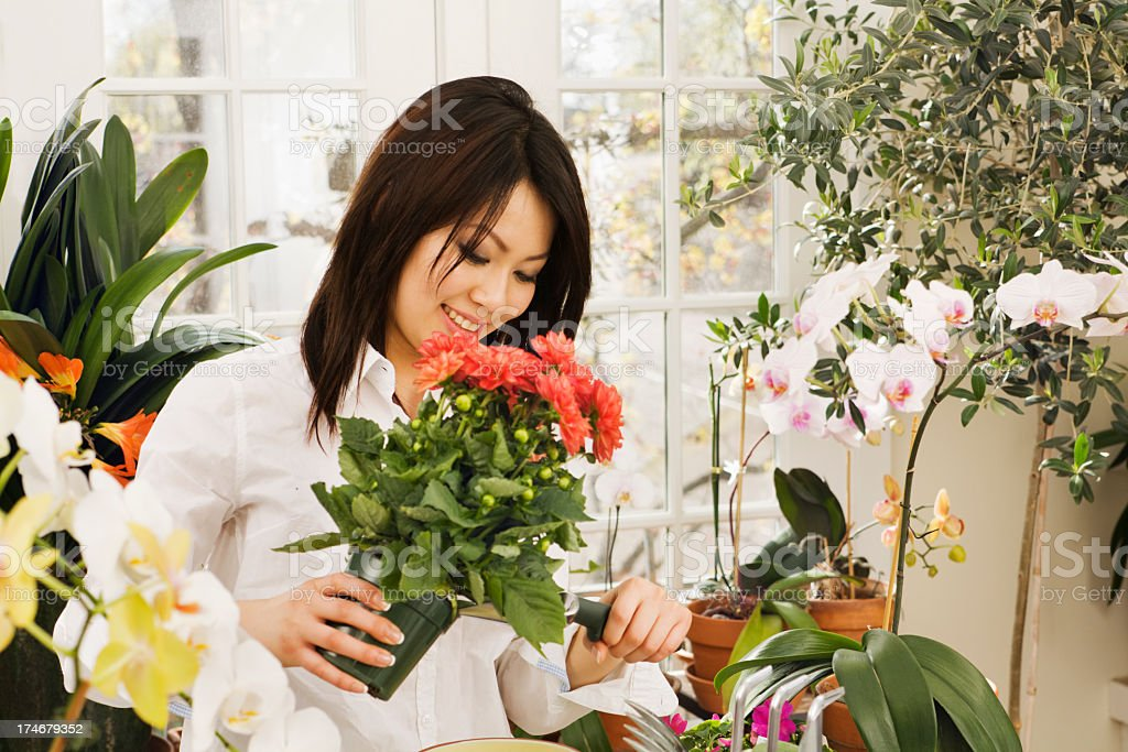 Asian Florist, Woman Small Business Owner in Retail Flower Shop royalty-free stock photo
