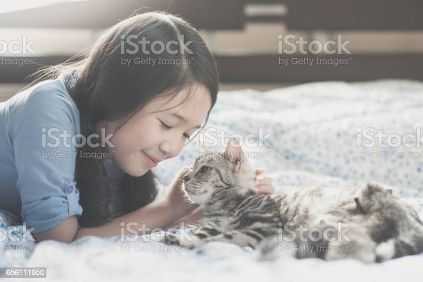 Asian girl playing with american short hair cat picture id656111650?b=1&k=6&m=656111650&s=612x612&h=ty2l6a1yds1ibugz93uior0eiuitcrtozfjhpyuwwns=