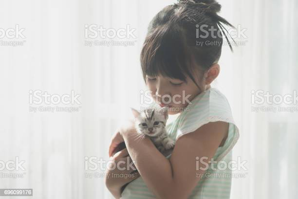 Asian girl playing with american shorthair cat picture id696099176?b=1&k=6&m=696099176&s=612x612&h=8s7i6ai6kd44onyuughntktdorpwsqbqbsdidt4cnp0=