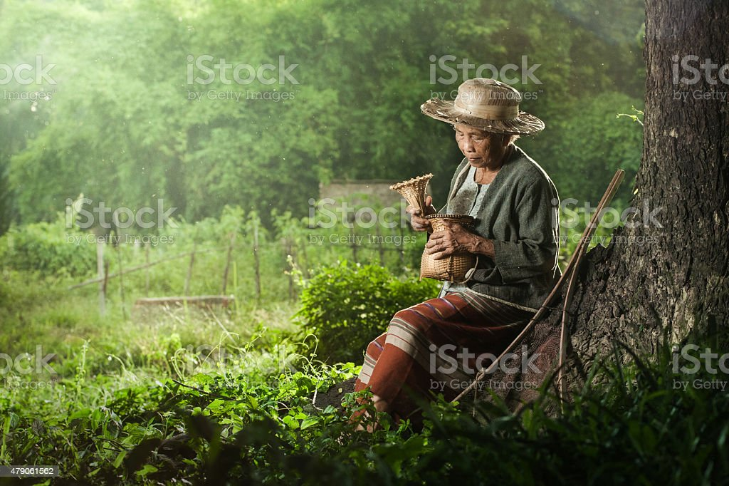 Asian grandmother fisherman with the net stock photo