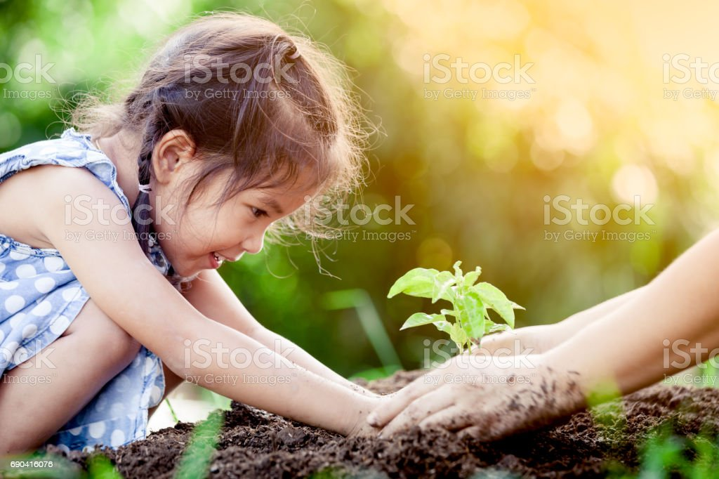 Asian little girl and parent planting young tree on black soil together stock photo