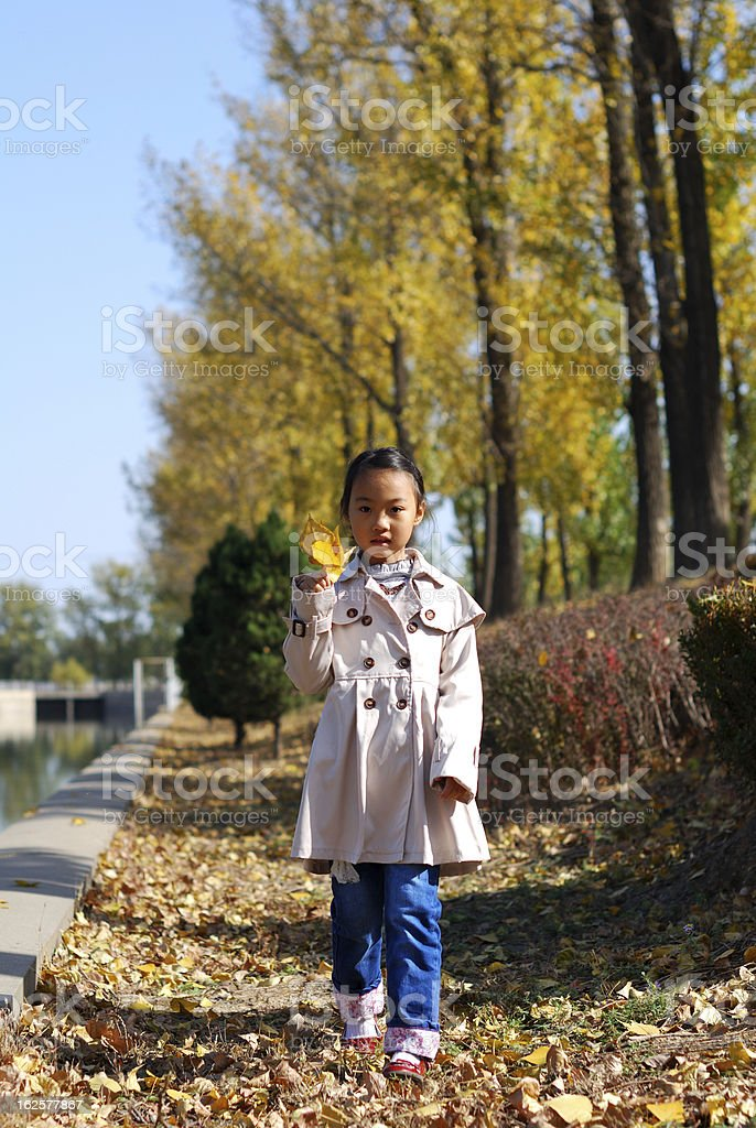 Asian little girl in autumn royalty-free stock photo