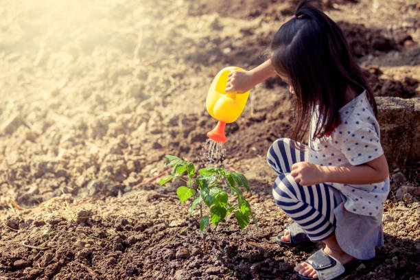 Asian little girl watering young tree with watering pot ストックフォト