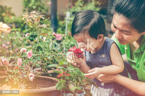 Asian mother and daughter admiring for red rose flowers and nature around backyard. Happy family having fun at garden. Concept about outdoors for children on summer day with sunlight. Vintage tone.