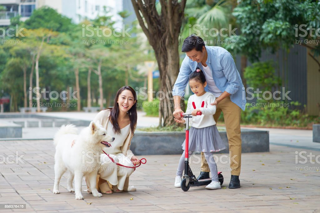 Asian parents & daughter playing scooter while walking dog in garden stock photo
