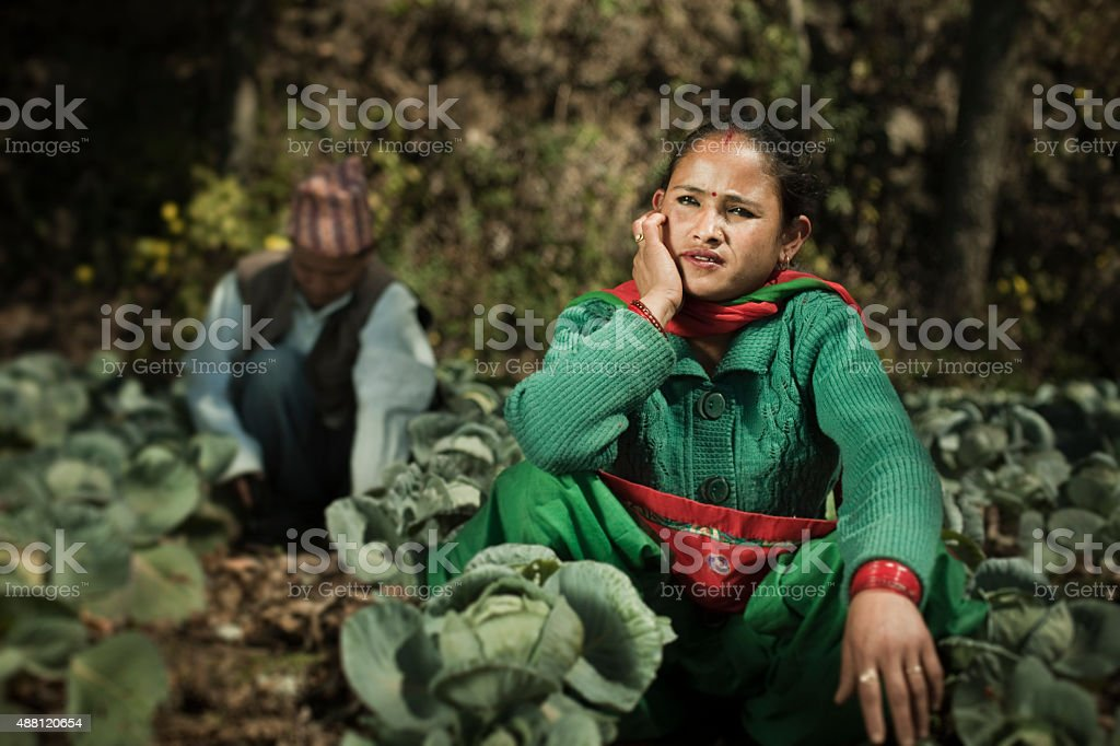 Asian peasant in cabbage farm thinking and looking at sky. stock photo