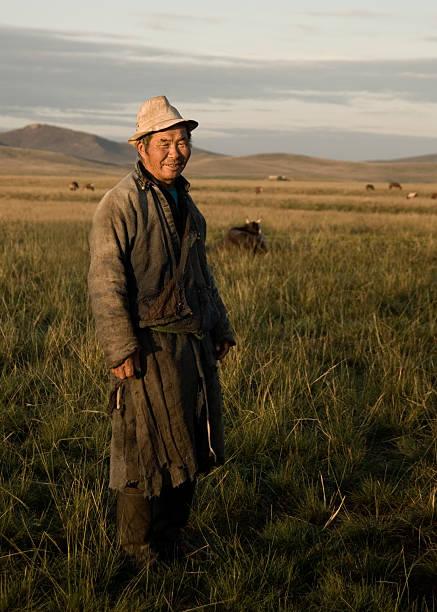 asiatische porträtaufnahmen - rawpixel stock-fotos und bilder