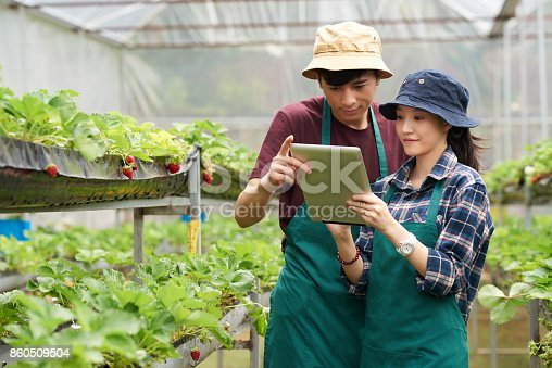 istock Asian Scientists at Modern Greenhouse 860509504