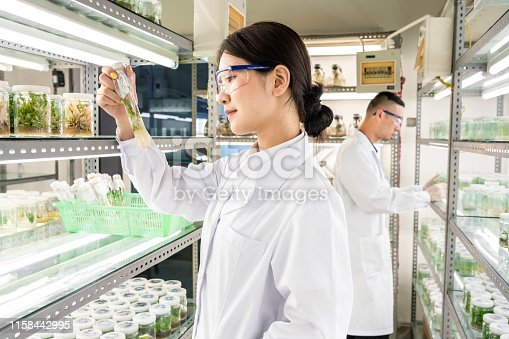 istock Asian scientists examining samples in test tubes 1158442995