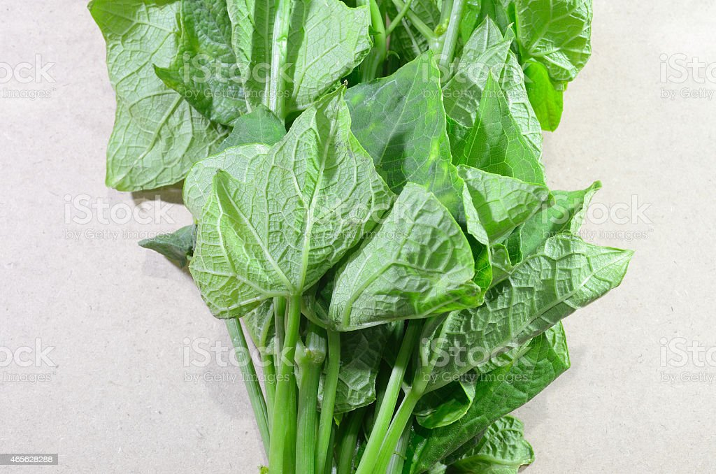asian spinach stock photo