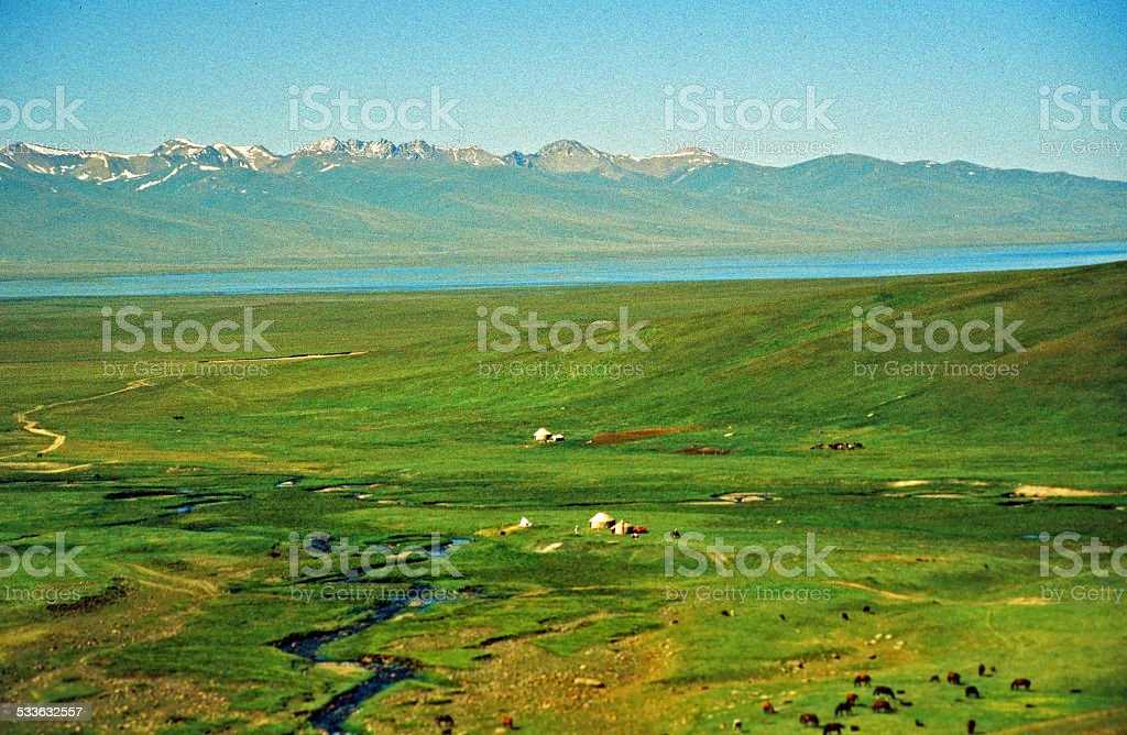 asian steppe stock photo