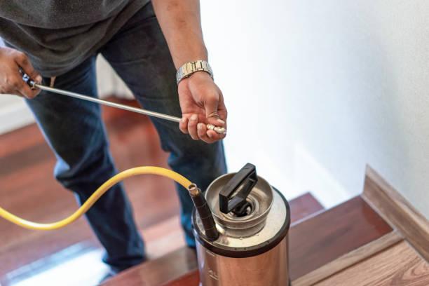 asian thailand termite staff company is spraying the destroy chemical liquid in to white ant nest in the wood around human house. - attrezzatura per la disinfestazione foto e immagini stock