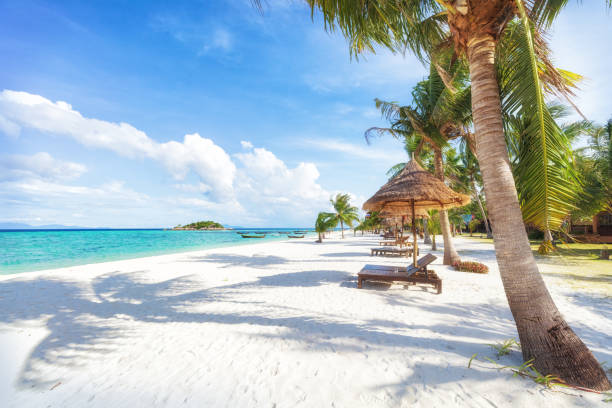 asian tropical beach paradise in thailand - caribbean stock pictures, royalty-free photos & images