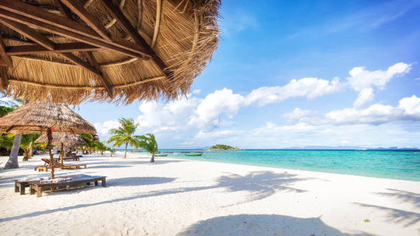 Asian tropical beach paradise in Thailand Empty sunny Koh Lipe island Beach with tall palms and beach bungalows idyllic stock pictures, royalty-free photos & images