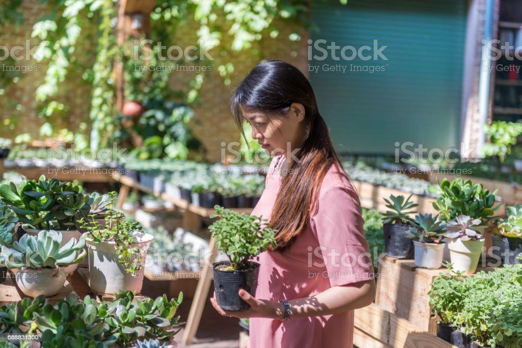 Asian woman chosing chosing new plants in the beautiful plant shop stock photo