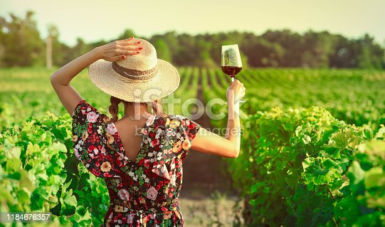 Back side of woman drinking red wine at vineyard during the sunset