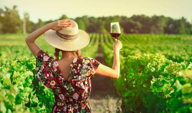 asiatisk kvinna dricker rödvin - vineyard bildbanksfoton och bilder