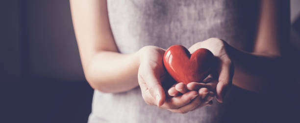 Asian woman holding red heart, health insurance, donation charity concept Asian woman holding red heart, health insurance, donation charity concept wellbeing stock pictures, royalty-free photos & images