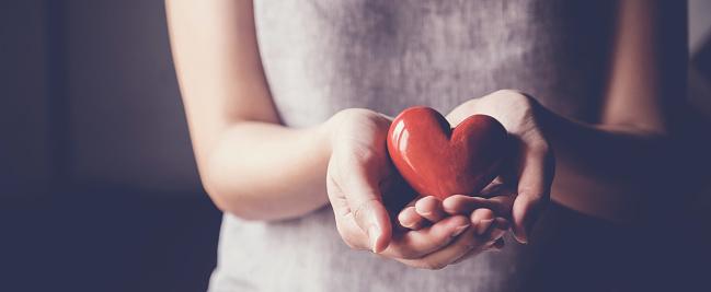 Asiatisk Kvinna Som Innehar Rött Hjärta Sjukförsäkring Donation Välgörenhet Koncept-foton och fler bilder på Adoption