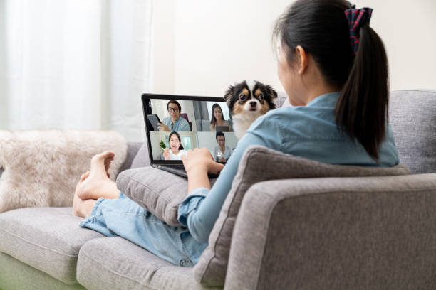Asian woman on sofa and team on laptop screen talking and discussion in video conference and dog interruption.Working from home, Working remotely, Pets interruption and Self-isolation. stock photo