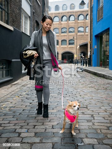 istock Asian woman walking her dog outdoors on the street 923805968