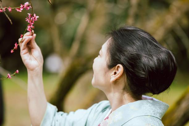アジアの女性の着物の公園の梅の花を見て ストックフォト
