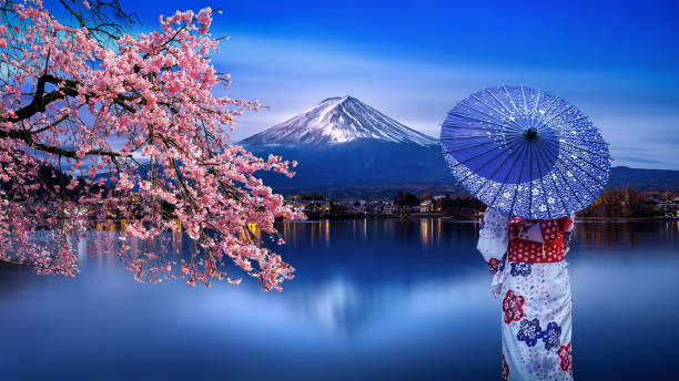 Asian woman wearing japanese traditional kimono at Fuji mountain and cherry blossom, Kawaguchiko lake in Japan. stock photo