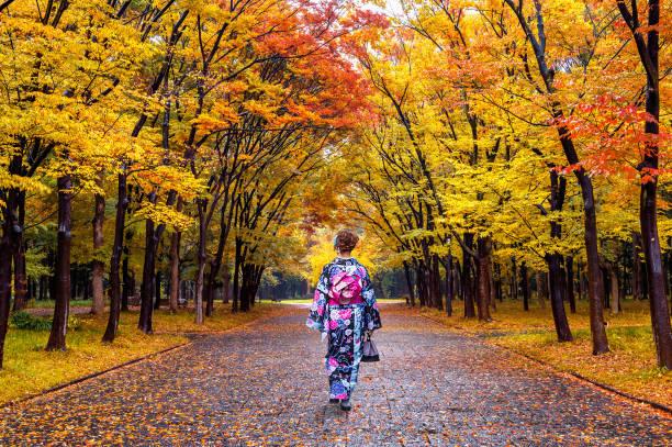 アジアの女性の秋の公園で日本の伝統的な着物を着ています。 - kimono ストックフォトと画像