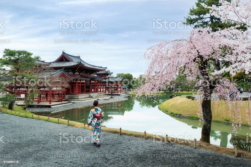 Asian women wearing traditional japanese kimono in Byodo-in Temple in Uji, Kyoto, Japan during spring. Cherry blossom in Kyoto, Japan. stock photo