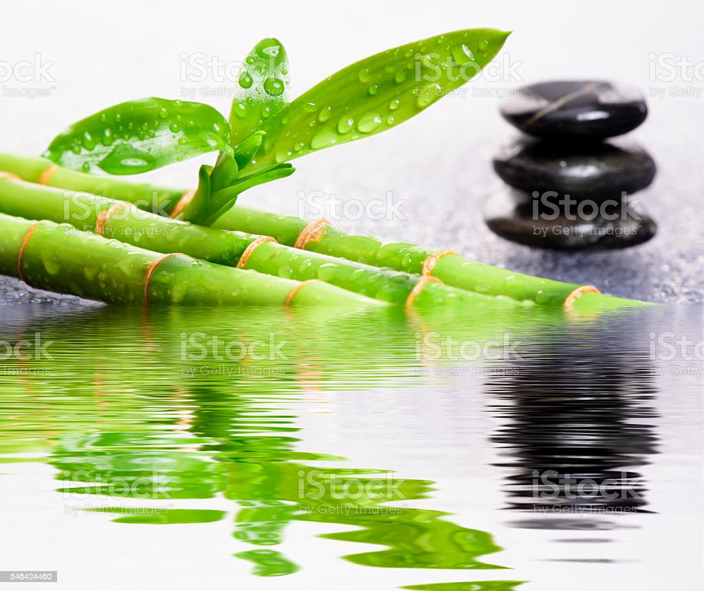 Asian zen garden stock photo