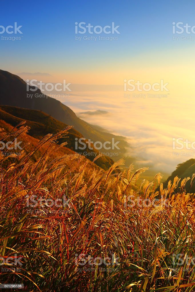 Aso sea of clouds and sunrise stock photo
