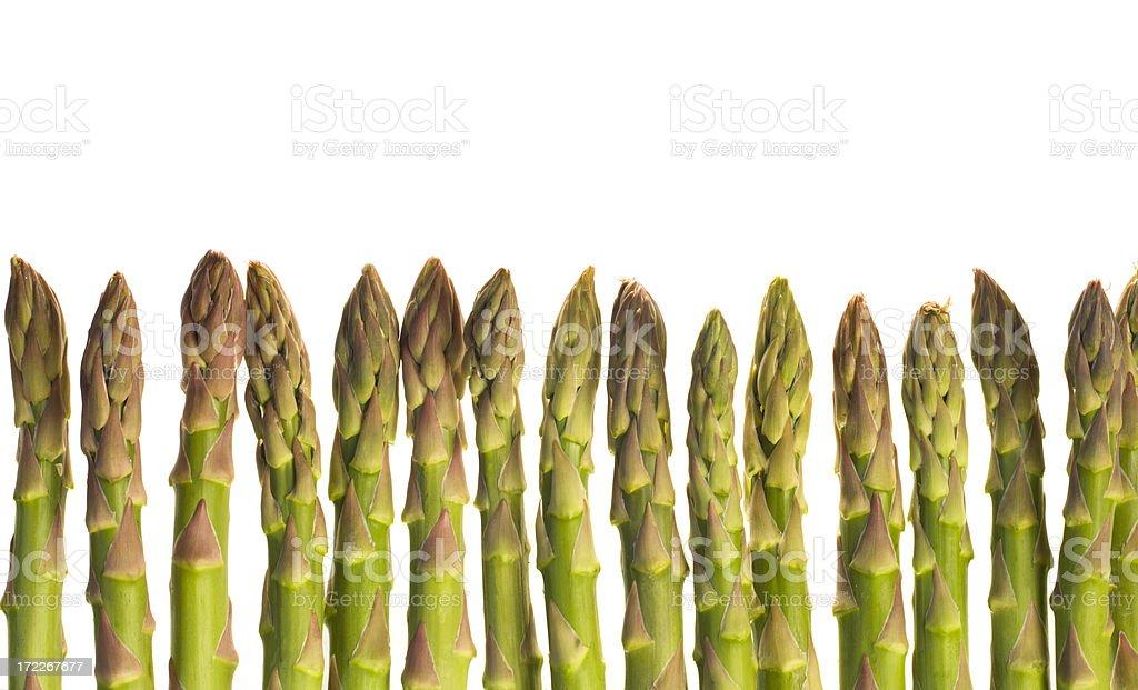 Asparagus Bottom Border royalty-free stock photo