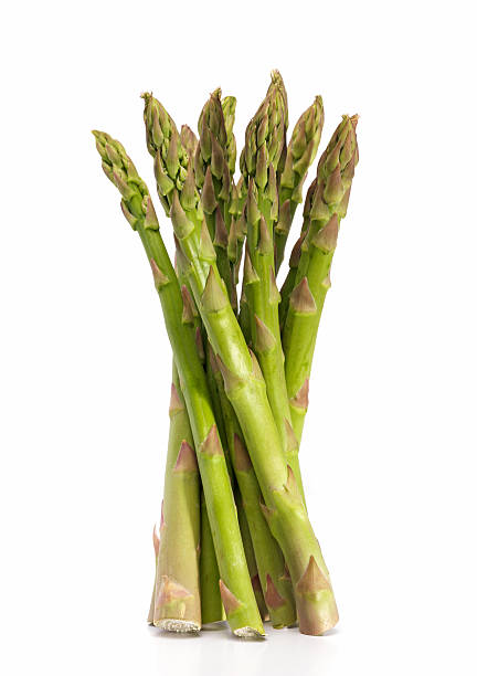 Asparagus bunch standing upright against a white background stock photo