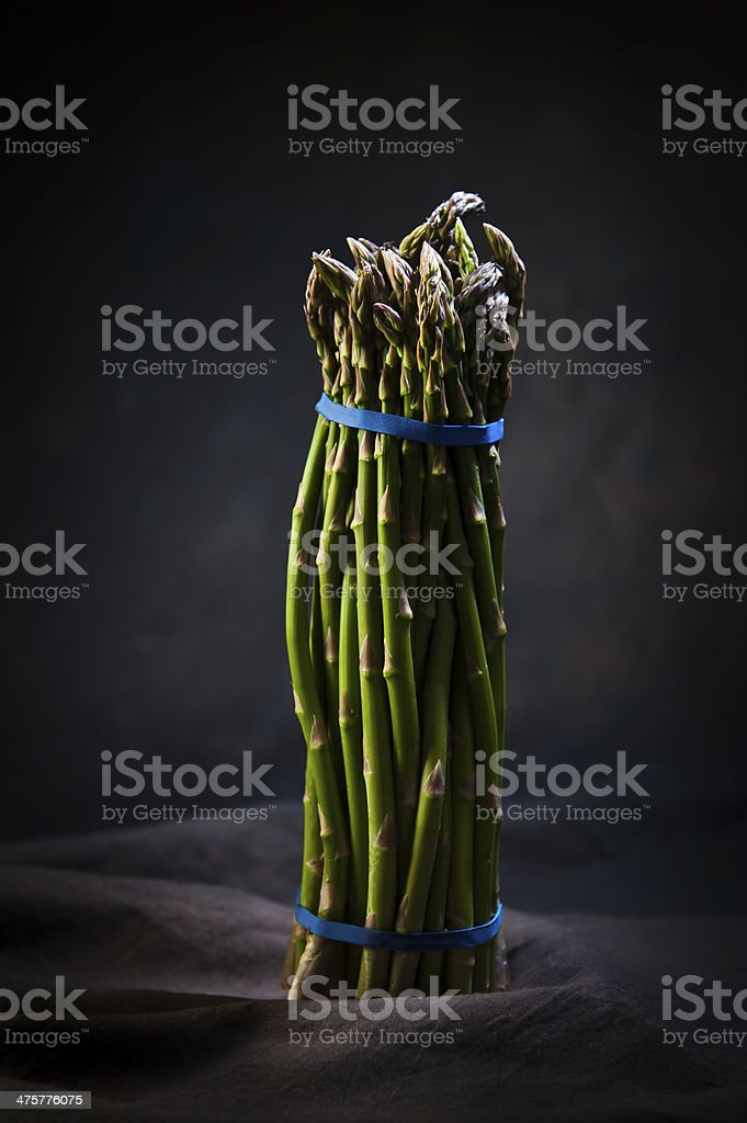 Asparagus in studio stock photo