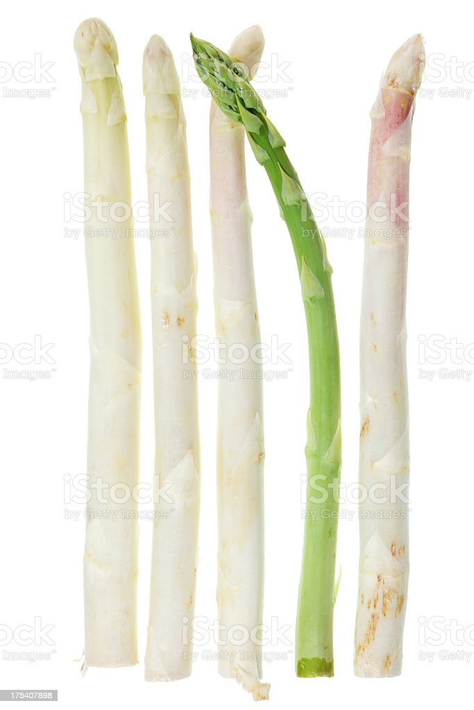 Asperges isolé sur blanc - Photo