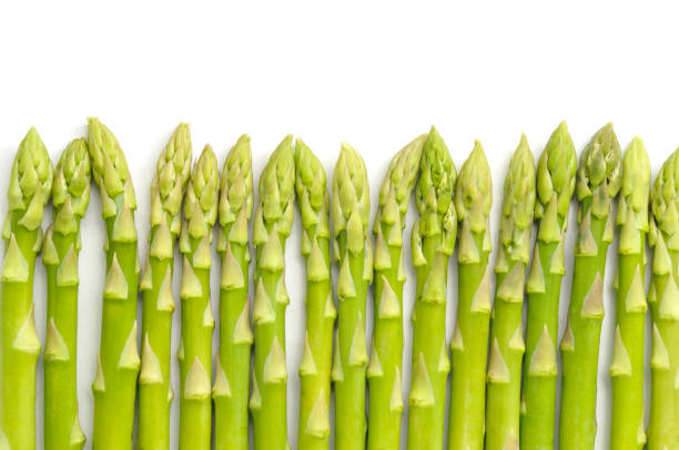 asparagus row - asparagus stock pictures, royalty-free photos & images