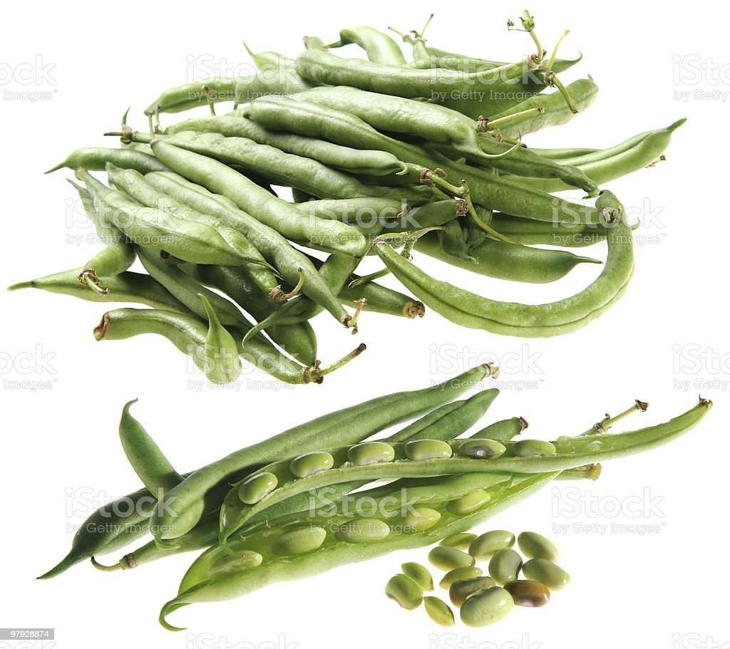Asparagus set royalty-free stock photo