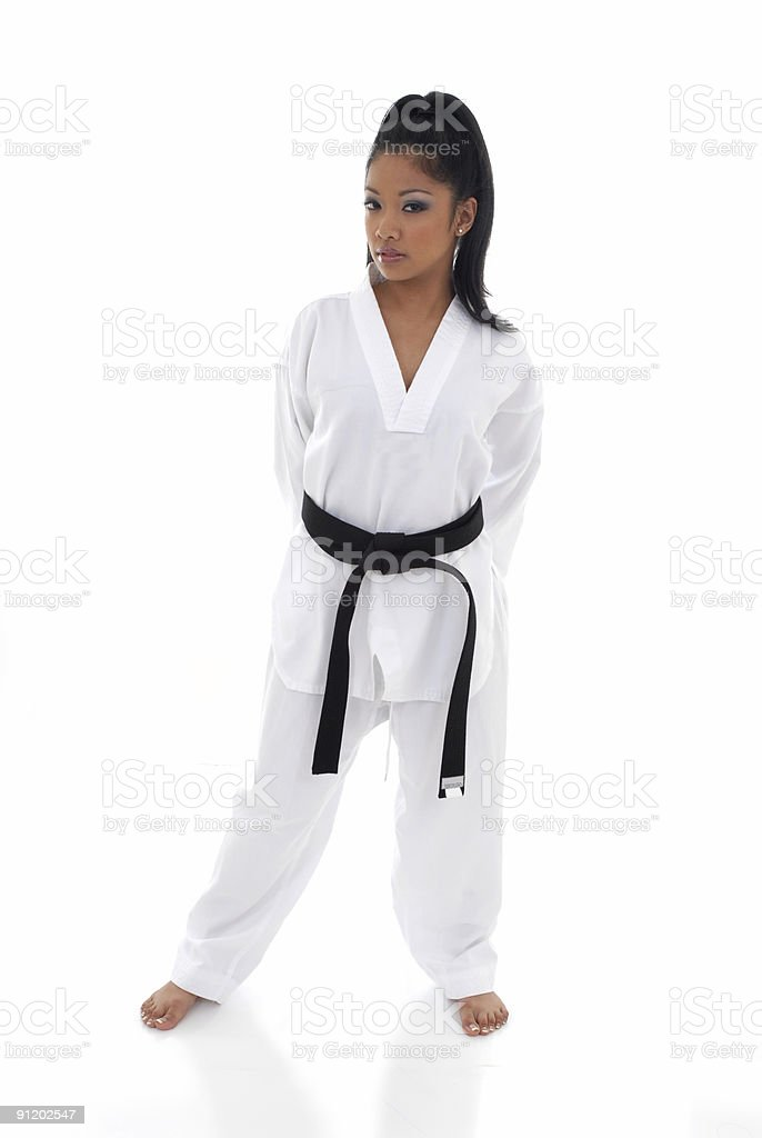 Aspects of the martial arts royalty-free stock photo