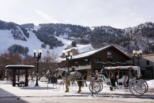 Aspen horse-drawn carriage stock photo