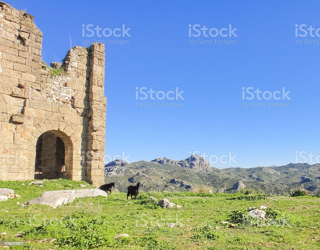 Aspendos (Aspendus) ruins in Turkey stock photo