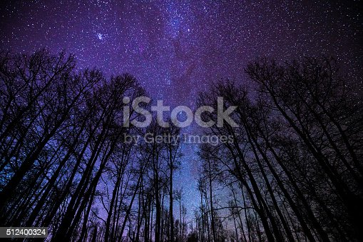 Aspens and Milky Way Night Landscape - Scenic view in low light pollution area with intense stars and Milky Way galaxy.  Western Colorado, USA.