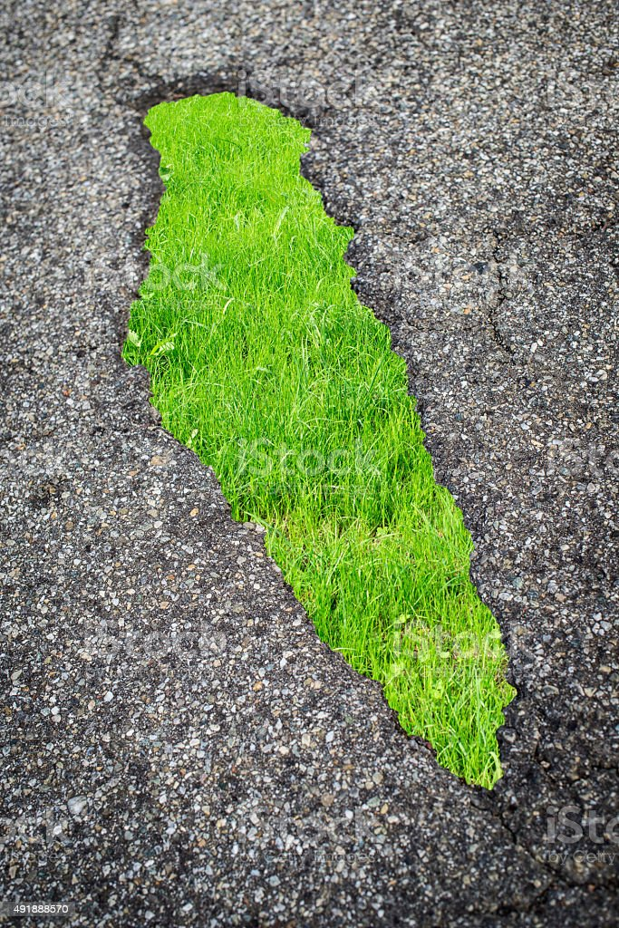 asphalt and grass stock photo