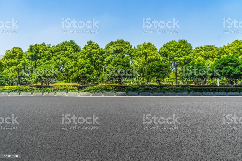 Asphalt road and forest stock photo