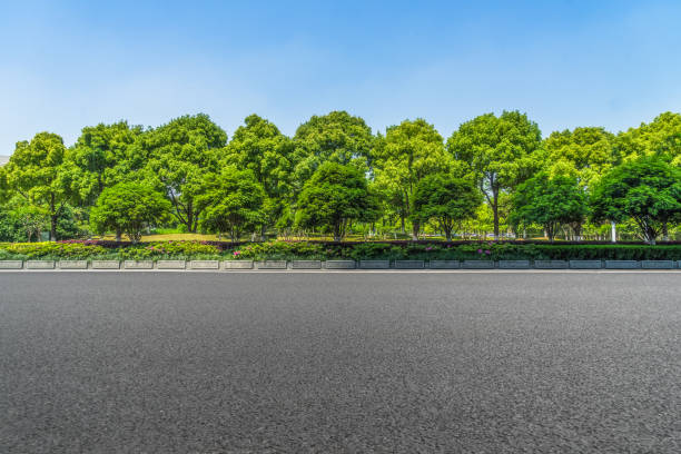 asphalt road and forest - trees stock photos and pictures