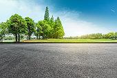 Empty asphalt road and green forest landscape