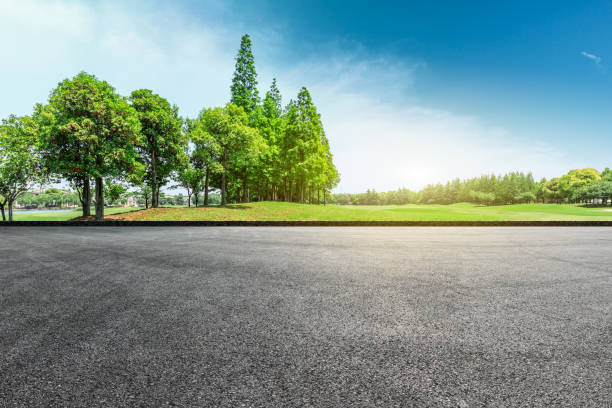 asphalt road and green forest landscape - street stock pictures, royalty-free photos & images