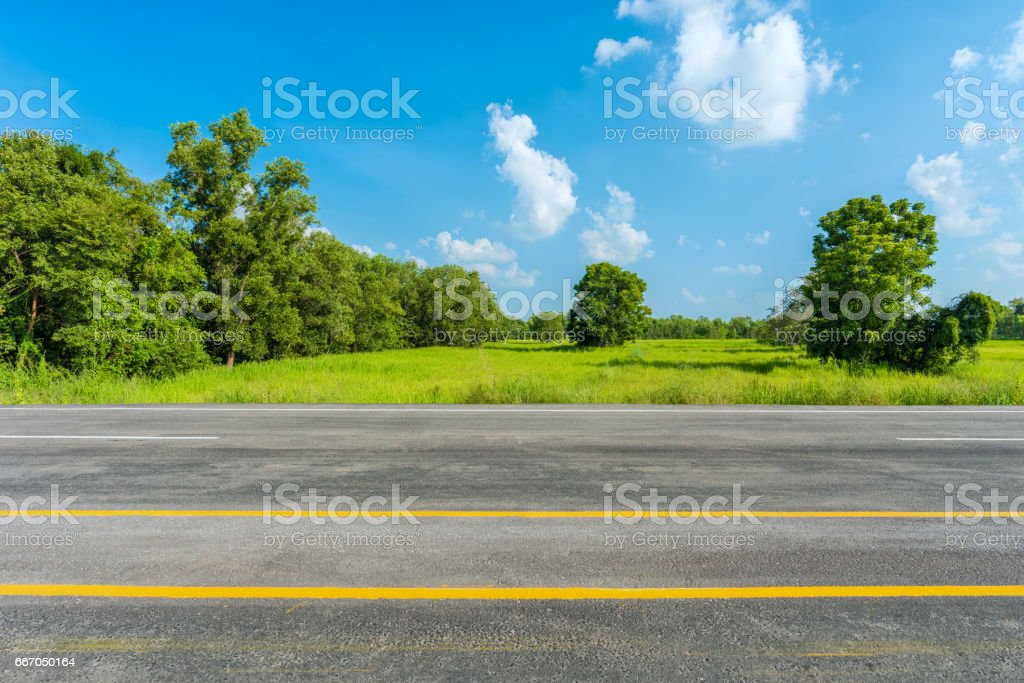 asphalt road and green rice field stock photo