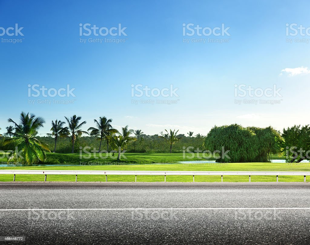 asphalt road and tropical forest stock photo